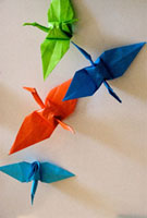 Ori-zuru -Crane for pray